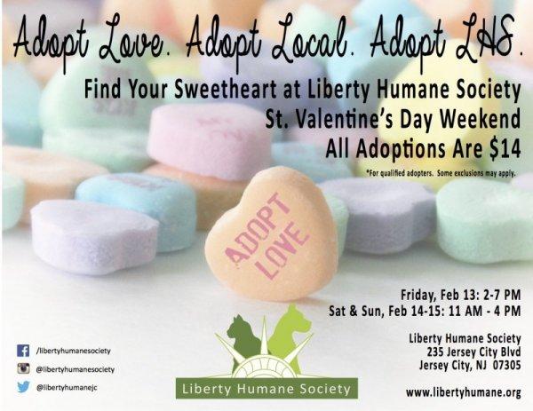 Adopt_Love_Flyer