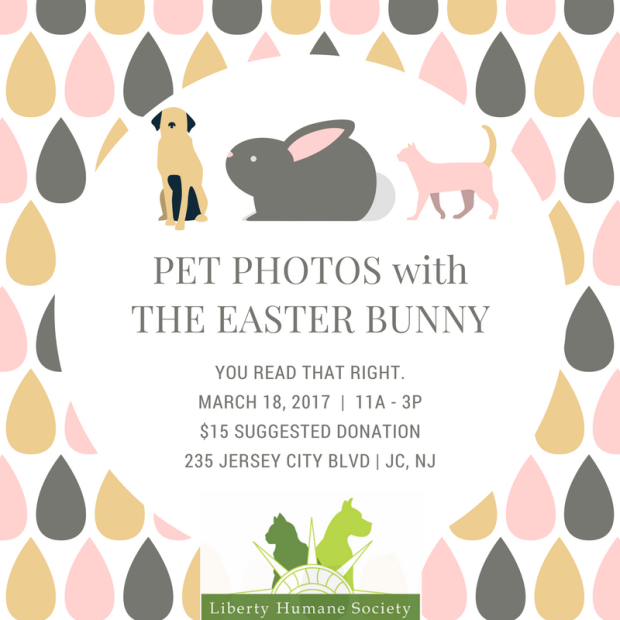 pet_photoswiththe_easter_bunny